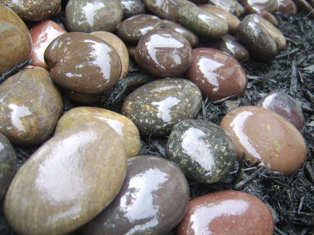 Nashville Mexican River Beach Pebbles shiney glossy