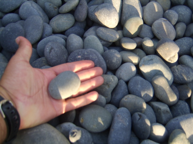 Mexican River Pebbles, Mexican Beach pebbles picture